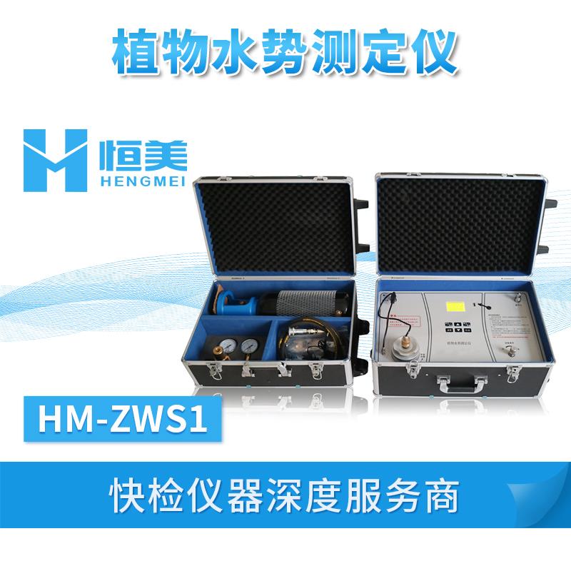 植物水势测定仪HM-ZWS1