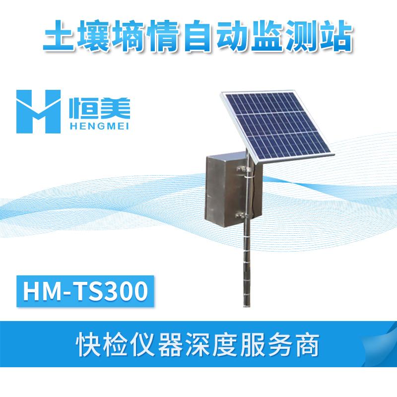 土壤墒情自动监测设备HM-TS300