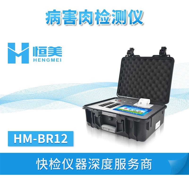 病害肉检测仪 HM-BR12