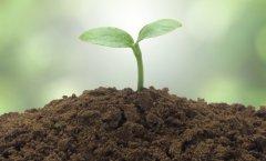 土壤肥料养分检测仪助力有机农业的发展