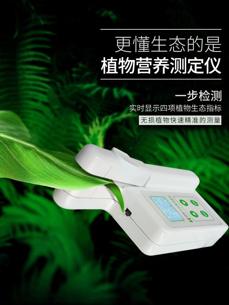 叶绿素测试仪